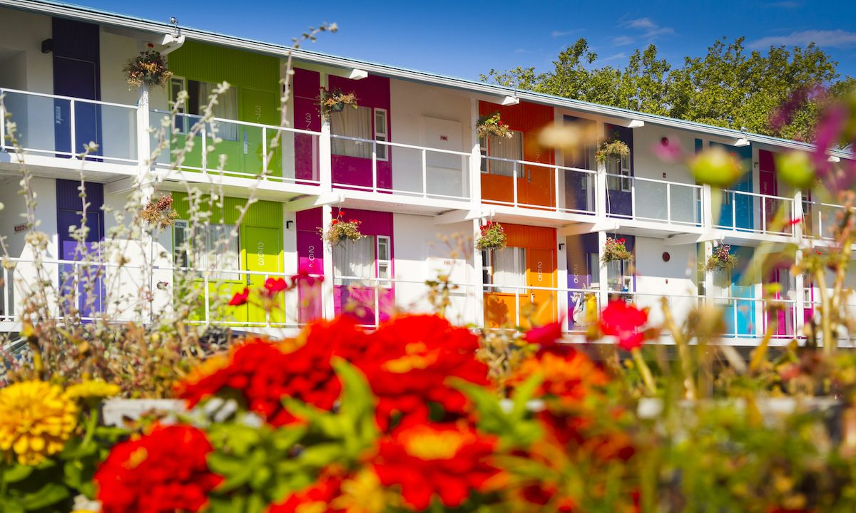 Hotel Zed brings bright colors and retro cool to Canada's Vancouver Island